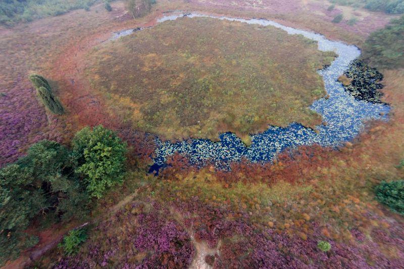 Natuurpark De Groote Heide