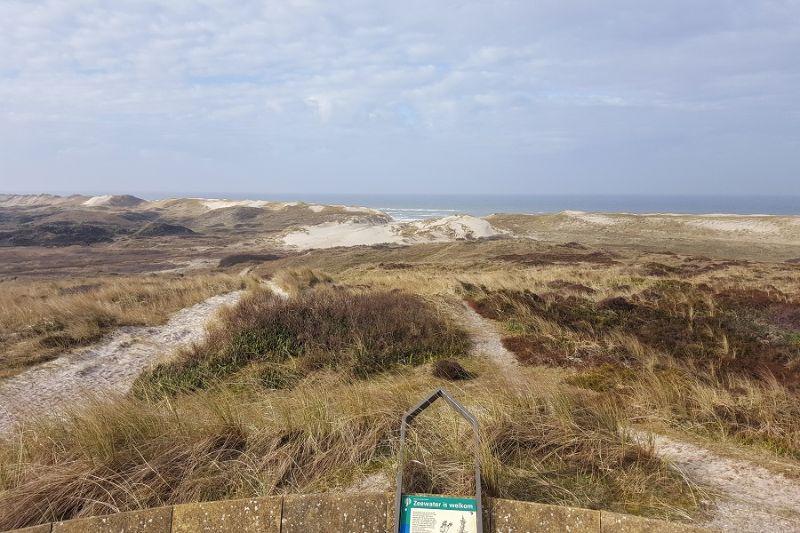 boswachterspad-schoorlse-duinen-uitzicht-op-de-kerf