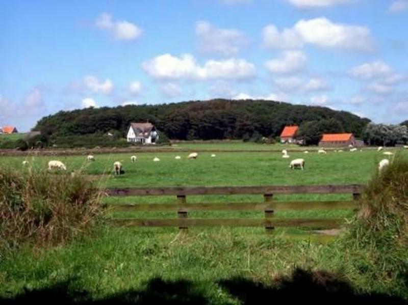 Hoge Berg op Texel