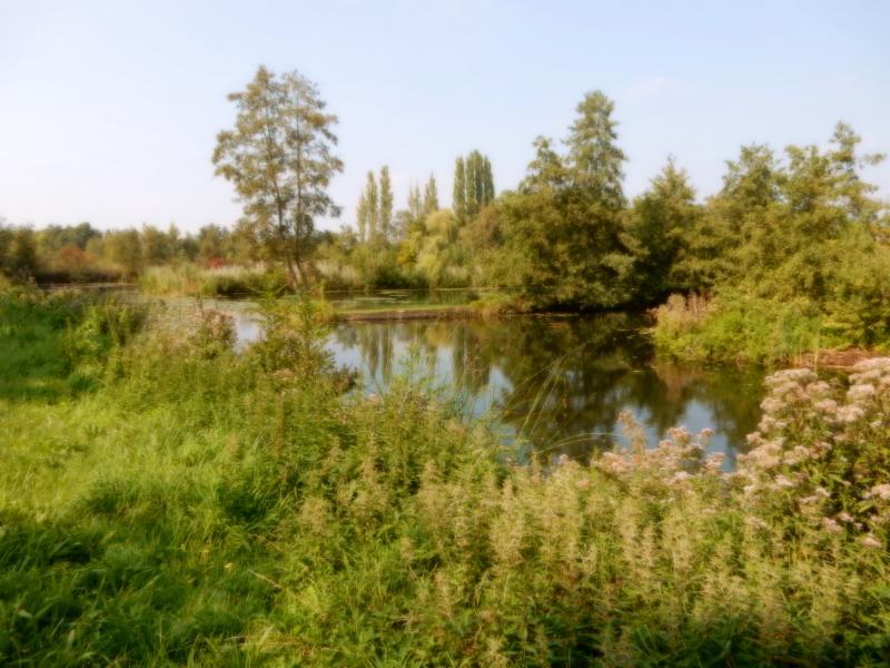 Fietsroute Maarssen en omgeving