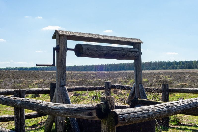 Planken Wambuis