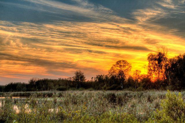 Cartierheide zonsopgang