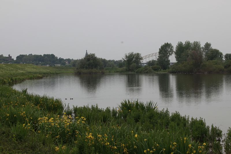 Nijmegen vanuit Ooy