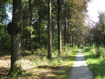 Natuurgebied de Kempen