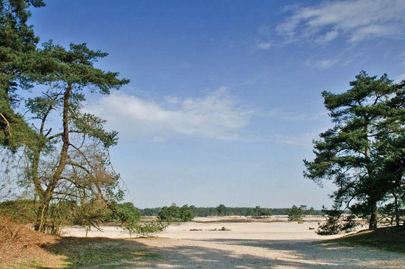 Lange Duinen Soest