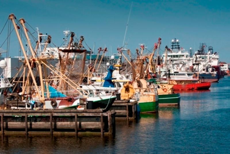 Visserijhaven