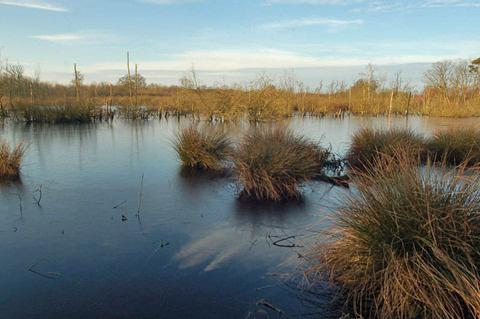 Natuurreservaat Elsakker