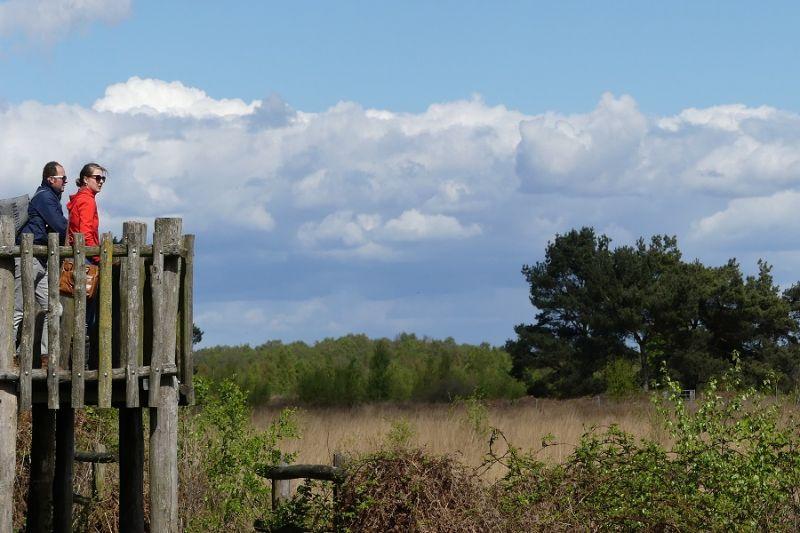 boswachterspad-grote-peel-veenhoogtemeter