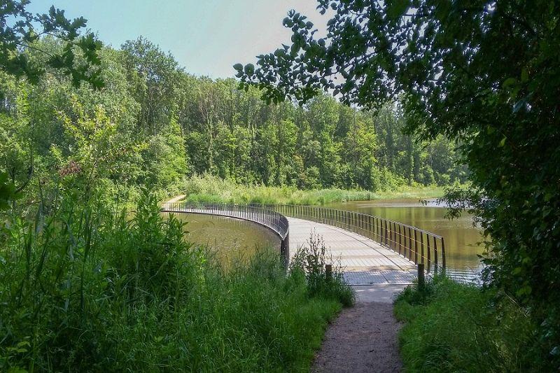 boswachterspad-walcheren-veerse-bos-drijvende-brug