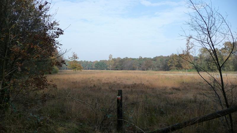 Kruishaarse Heide