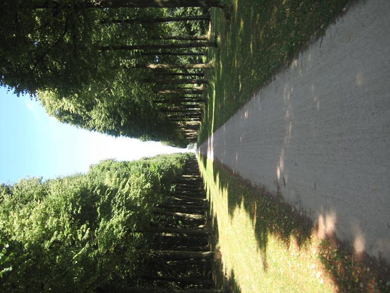 Fietspad tegenover Paleis Soestdijk