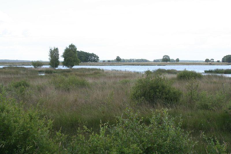 Foto 0: De Ster van Dwingeloo route Spier