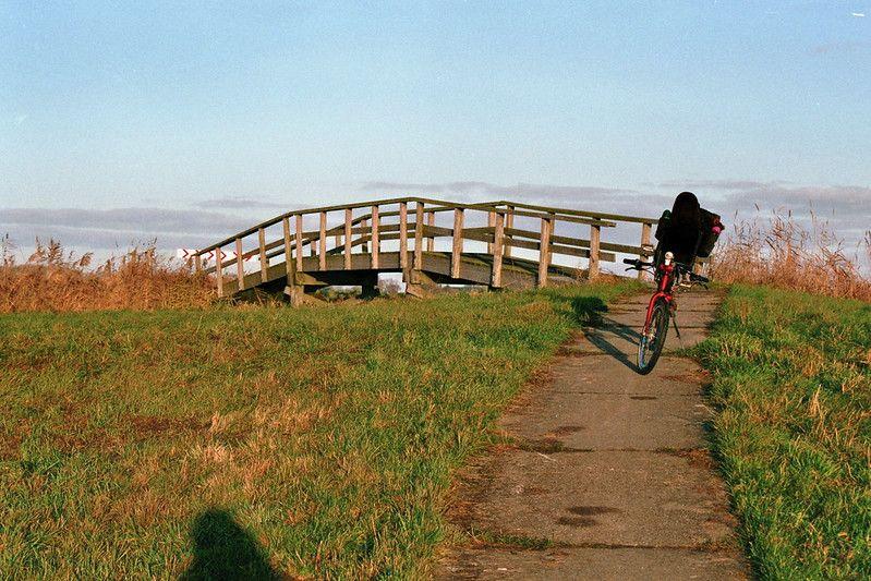 Fietspad en bruggetje bij het Hondshalstermeer