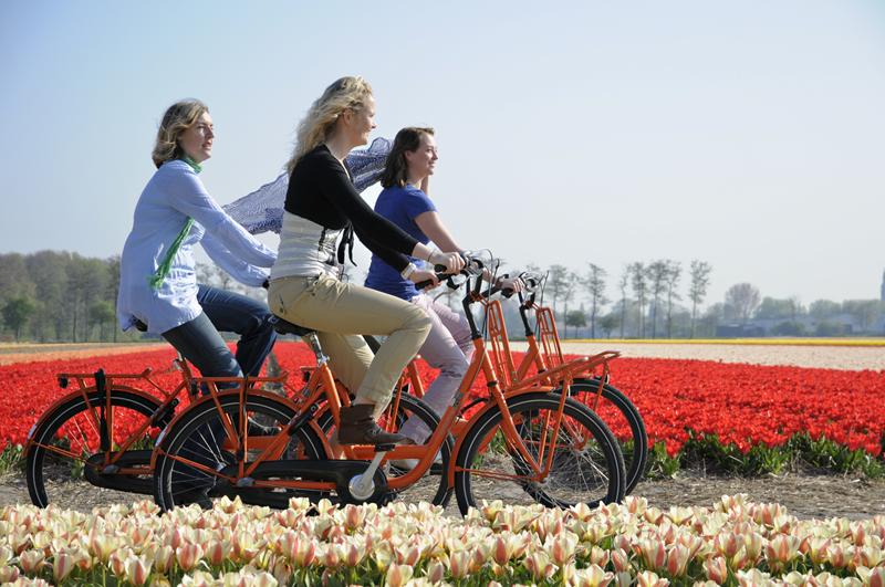 Flowers of Amsterdam fietsroute