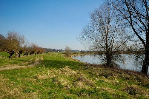 De Rijn bij de Westerbouwing