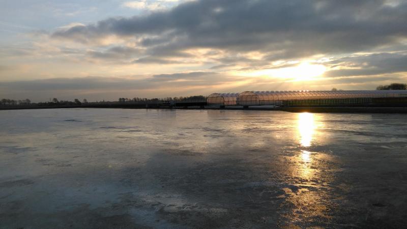 ijsbaan Waarland