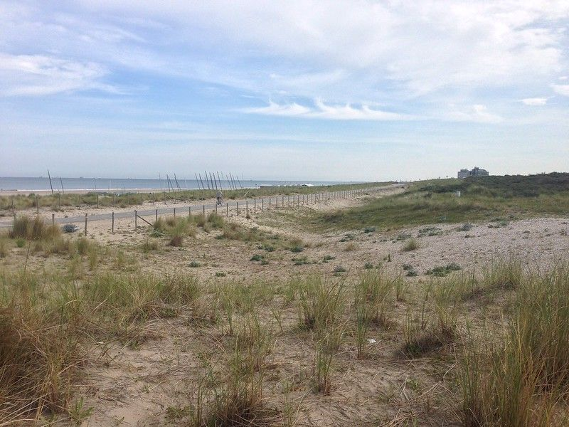Beach near Den Haag