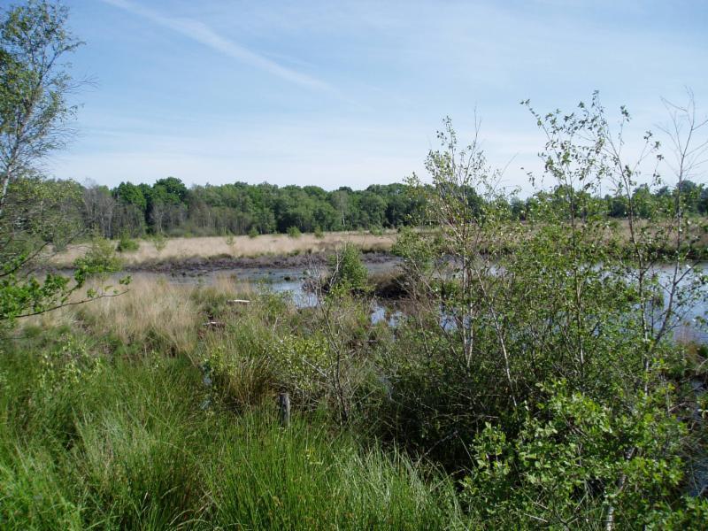 Fietsroute Hellendoorn en omgeving