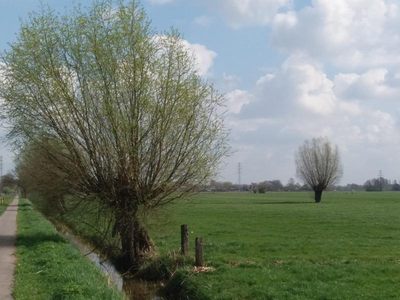 1704 56 Wetering