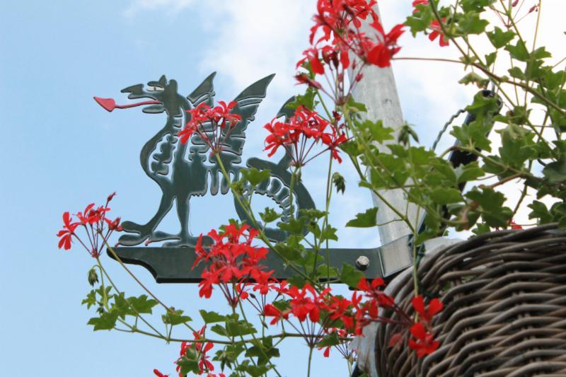 ruys van splintersingel beesel bloembakken draakje aug 2013 (1).jpg