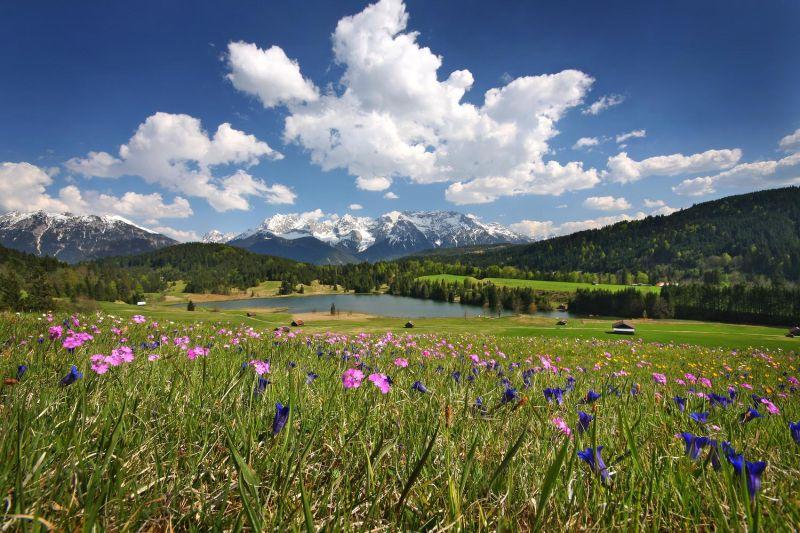 Alpenwelt Karwendel - Geroldsee im S. Blumenwiese_410