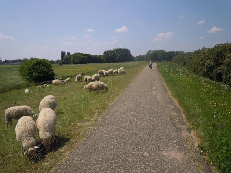 Zutphen - Deventer