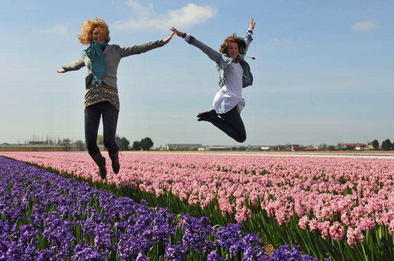 Hollandse Bloemenroute