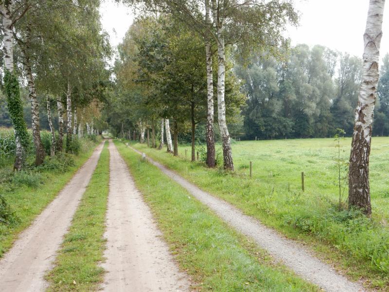 Fietsroute Barchem en omgeving