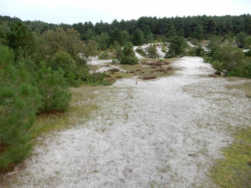 Fietsroute Schoorl en omgeving