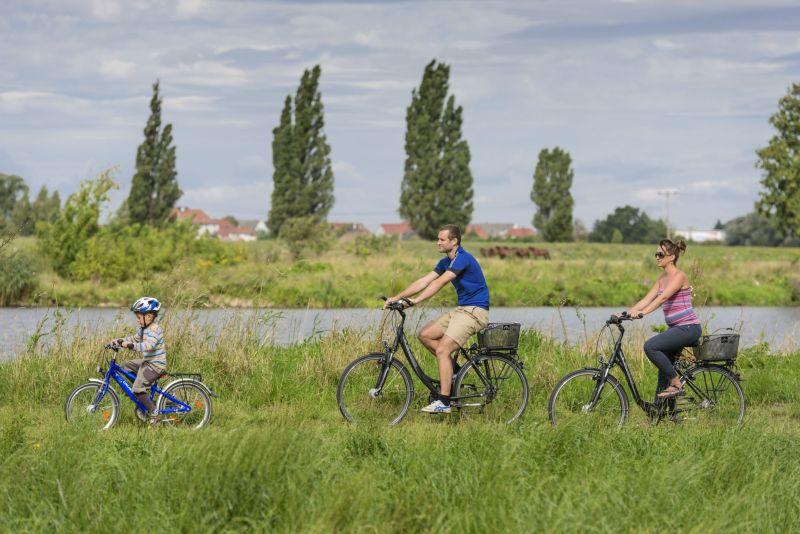 Mulderadweg - Vereinigte Mulde (Radfahrer bei Wurzen).jpg
