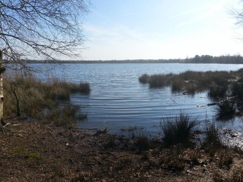 Uitzicht op water landgoed De Utrecht