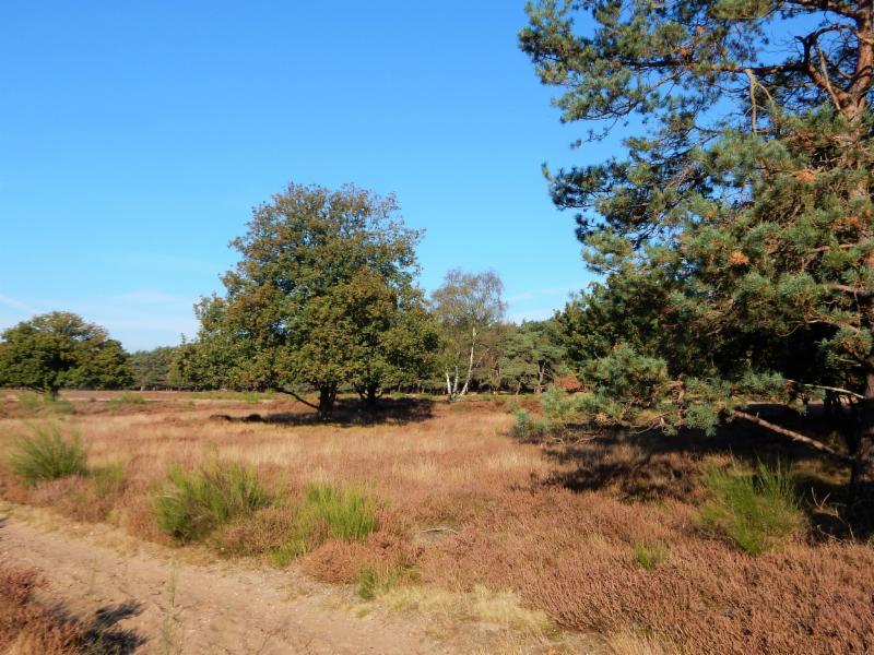 Fietsroute Blaricum en omgeving