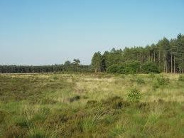 Groote Heide Heeze