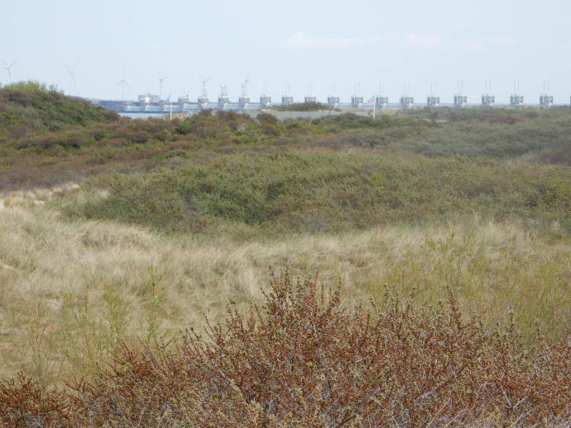 Fietsroute Veere en omgeving