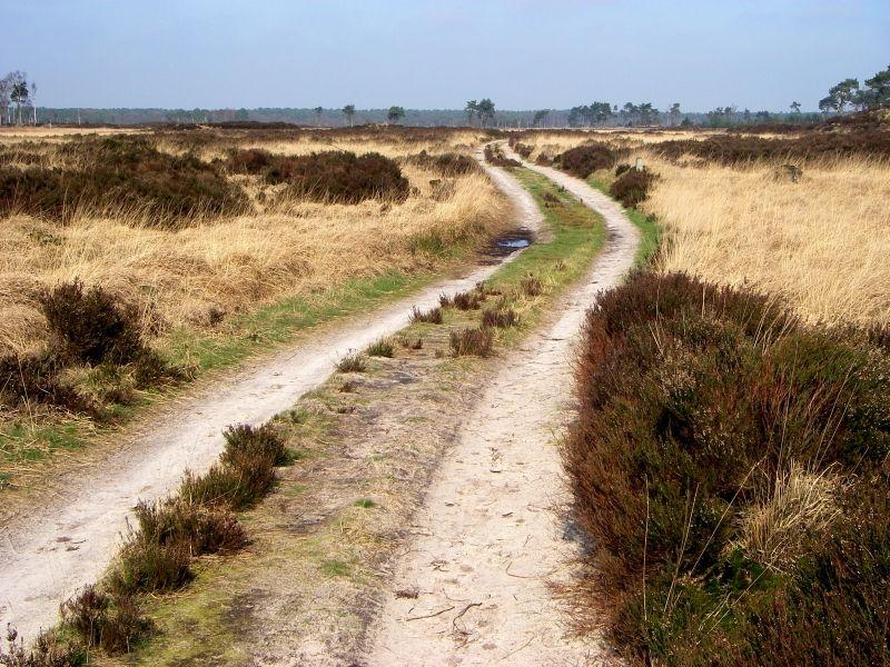 Kalmhoutse Heide