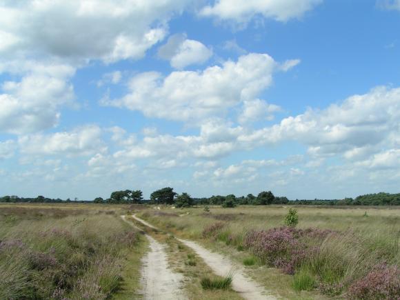 Braakhuizense Heide