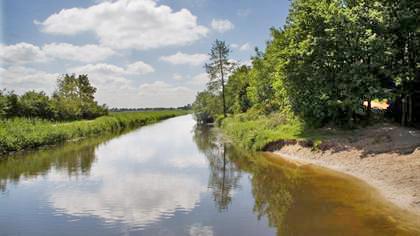 Natuurgebied Den Treek