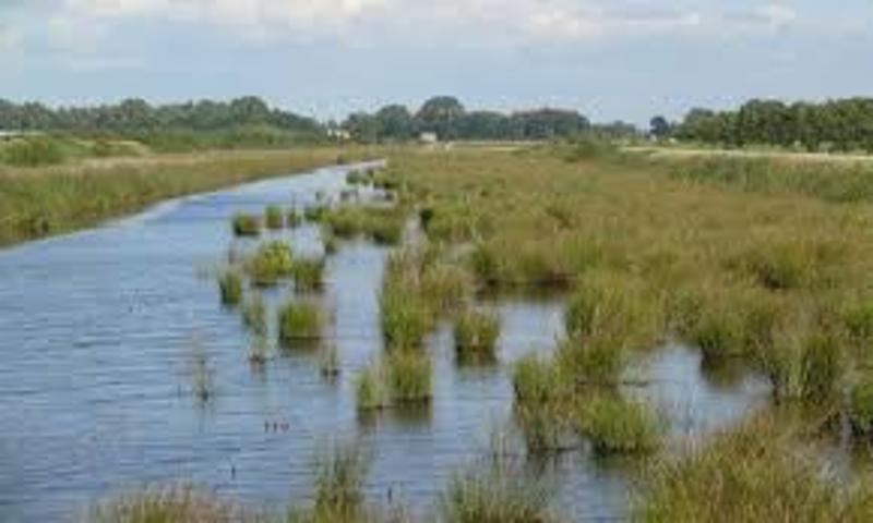 Het veenkoloniale Mondengebied gezien vanuit Weerdinge.