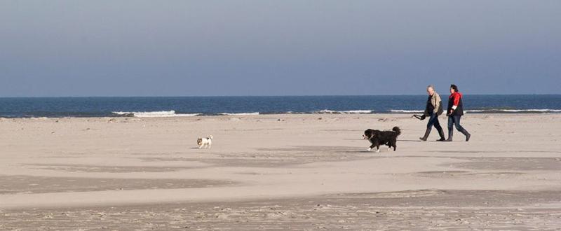 Foto 1: Het eilandleven op Ameland