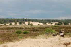 Rozendaalse Zand