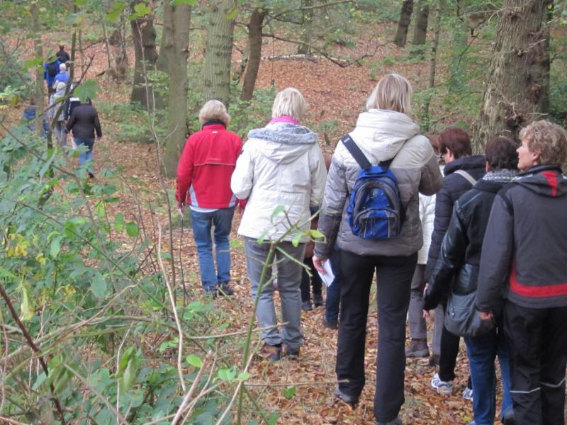 10.000 stappenwandeling door Nieuw Leeuwenhorst Bos