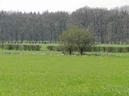 Landgoed Boeschoten