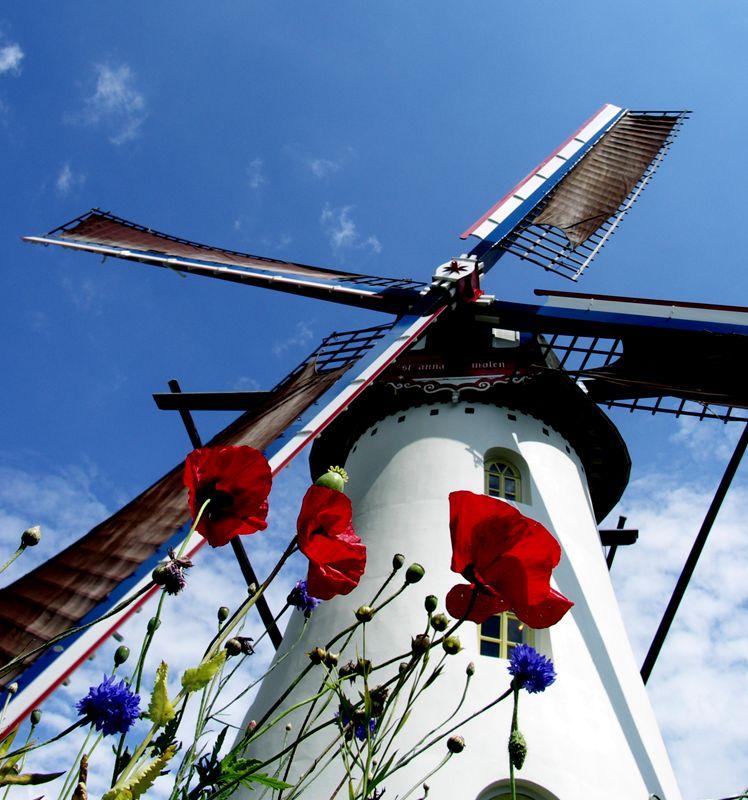 Sint Annamolen aan de Keenterstraat in Weert