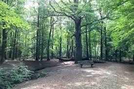 Burgemeester Rijkenspark