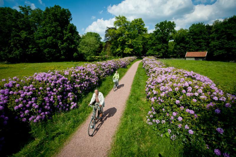 Rhododendronlaan Landgoed Scholtenhaer