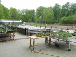 Historische moestuin - Von Gimborn Arboretum