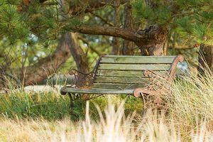 POI-Picknickplaatsen-shutterstock_123413617