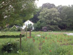 Landgoed Kraaybeekerhof