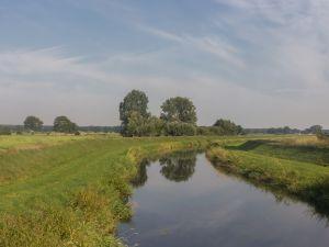 7.Bolksbeek