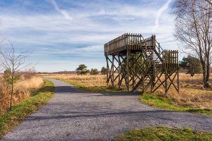 Uitkijktoren Groote Peel